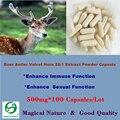 Veludo Chifre De Veado Chifre 20:1 Extrato Em Pó Cápsula Melhorar Imunológico e Função Sexual 500 mg * 100 Cápsulas
