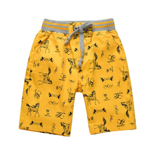 2017 New Summer Boys Shorts Kids Sport Casual Mid Regular Print Patter Animal Cotton Children Trousers Short Pants 2P033