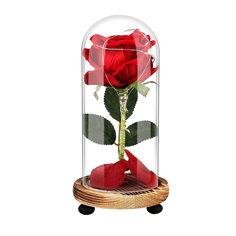 USB Rechargeable LED Preserved Dry Rose Flower in Glass Cover Mothers Day Gift Hot