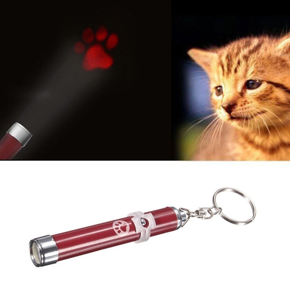 Spot Pet Laser Classic 5 In 1 For Cats Dogs Hologram Images Play Valentine Led Chaser Light Cat Toys From Home Garden On Alibaba Group