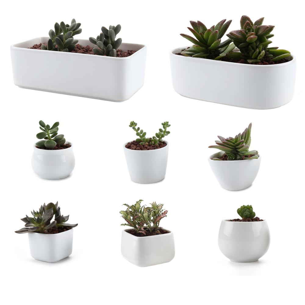 DIY White Ceramic Serial Succulent Plant Pot Cactus Plant Pot Flower Bonsai Pots Container Planter Garden Decoration 10 Type