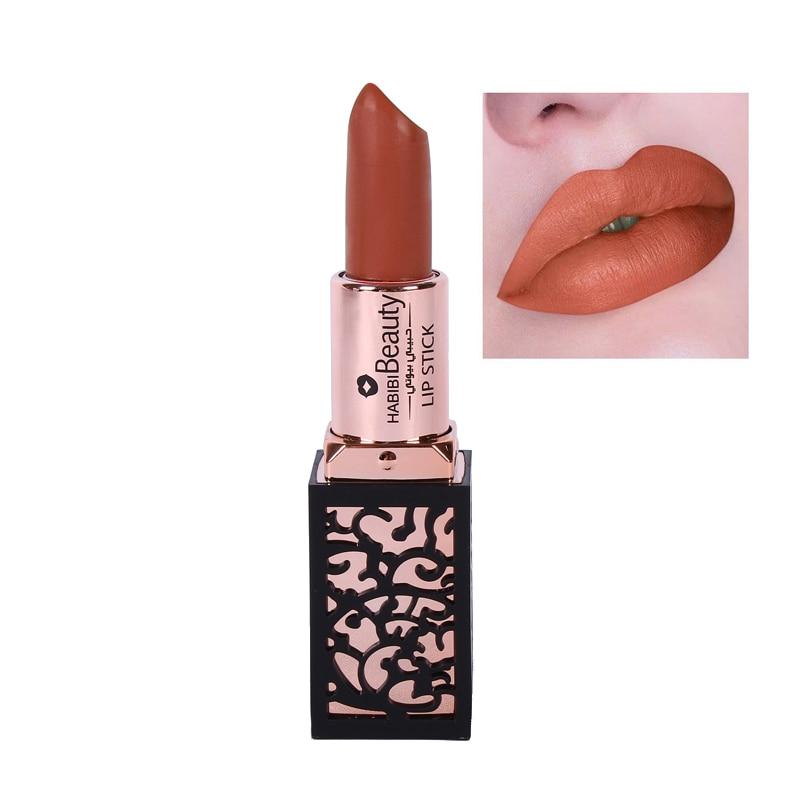 Habibi Beauty Brand Lip Color Cosmetic Kits Long Lasting Pigments Red Brown Velvet Matte Lipstick Luxury Makeup