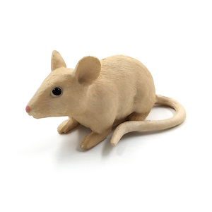 Image 4 - Simulation forest plastic small animal figures model for cute kawaii Cat  Mouse Burmese Opossum Mouse decoration figurines toys