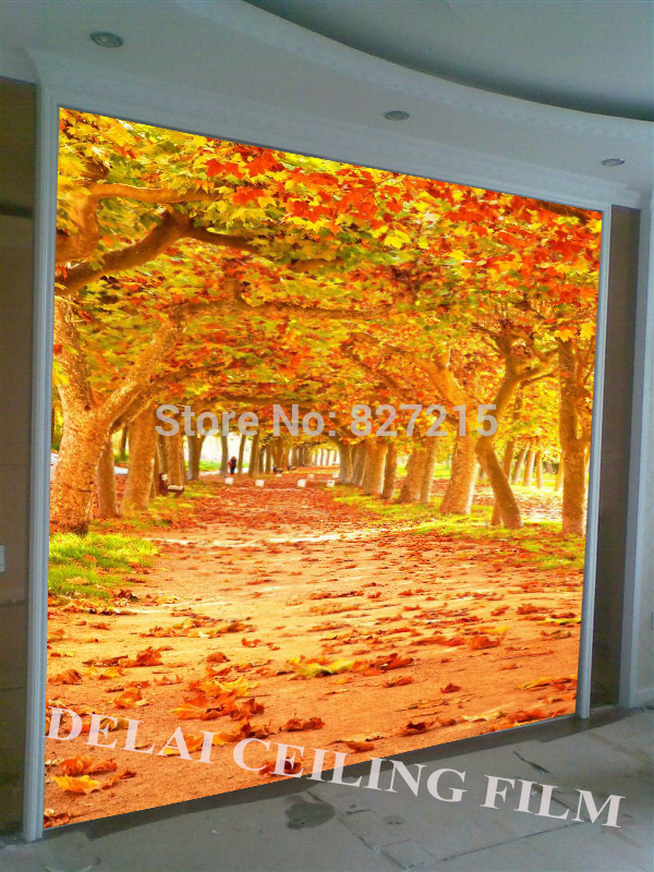 T-119 Yellow leaves mural wallpapers Australian maples falling wall mural for tv sofa background wall decoration flamingo wall mural