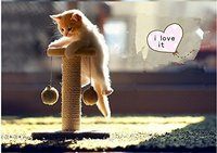 Climbing Tree For Cat Cat Jumping Toy Climbing Frame Cat Furniture Scratching Post Pet Home Cat