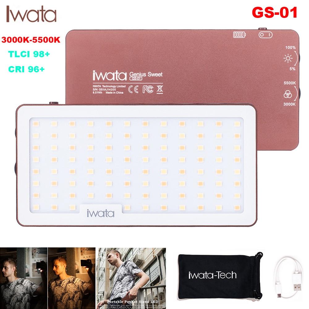 Iwata Ultra Thin Aluminum Dimmable 94Pcs LED Video Light Built in Battery CRI96 3000k 5500K for