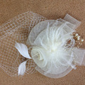 Ivory Black Face Veil Layers Simple Tulle Wedding Veils Feather Bird Cage Wedding Accessories Bridal Veils For Wedding Dress