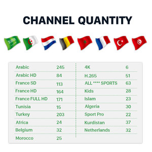 Image 2 - צרפתית ערבית IPTV תיבת HK1 מקסימום 4K אנדרואיד 9.0 טלוויזיה חכמה תיבת משלוח 1 חודש IPTV צרפת טורקיה בלגיה מרוקו הולנדי אלג יריה IP טלוויזיה