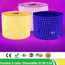 100m/lot 120leds/m SMD 5730/5630 AC220V 3 Color Change Dimmable LED Strip Blue Warm White Purple Flexible Tape Light Controller