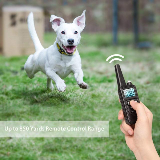 Electric Dog Training Collar with LCD Display
