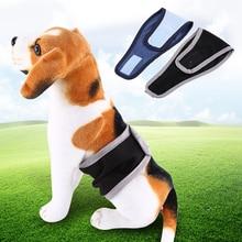 Male Pet Dog Shorts Belly Wrap Toilet Training Diaper Pet Dog Physical Sanitary Underwear Pants Dog Shorts