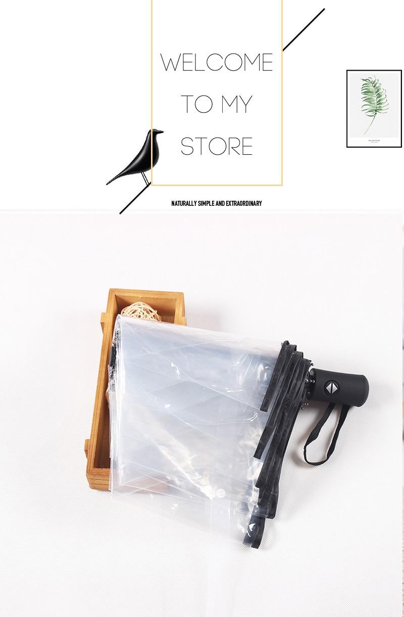 parapluie transparent1 (1)