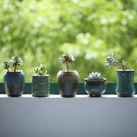 도자기 데스크탑 꽃 냄비 미니 세라믹 화분 중국 스타일 정원 꽃 상자 8 유형 선택 냄비 식물 성격