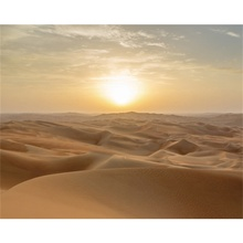 Laeacco Canvas Calligraphy Painting Sand Desert Sunshine Posters and Prints Natural Wall Art Pictures for Living Room Home Decor