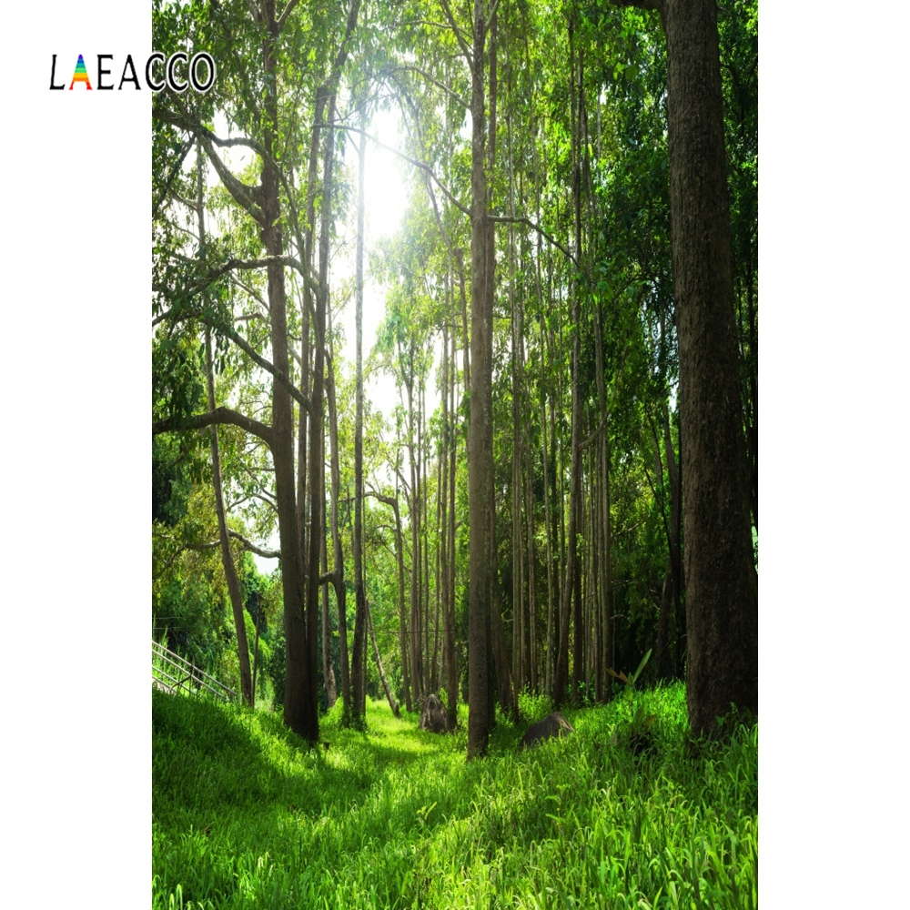 Laeacco Green Tree Forest Way Backdrop Nature Portrait Photography Background Customized Photographic Backdrops For Photo Studio