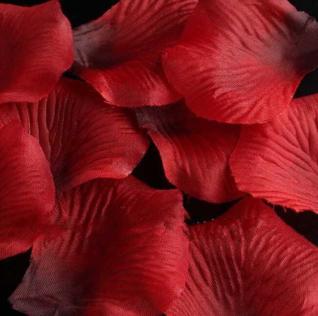 NEW Design 3000pcs Wine Red Color Flower for Decoration Romantic Atificial Polyester Wedding Rose Petals 49*49*0.1mm cx610010