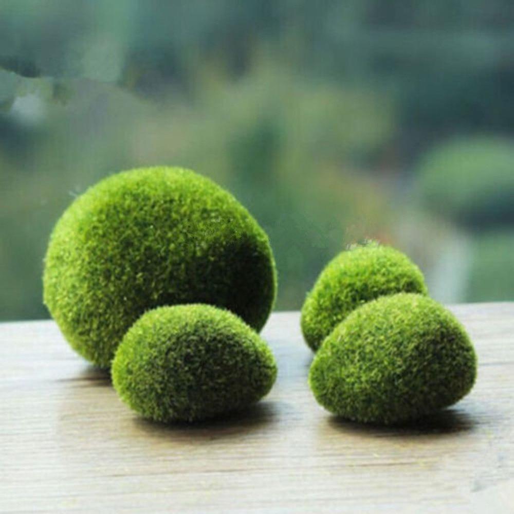 1Pcs Marimo Stone Moss Miniature Home Craft Miniature Dollouse Garden Craft  Stone Moss Fairy Bonsai Plant Decor Wholesale