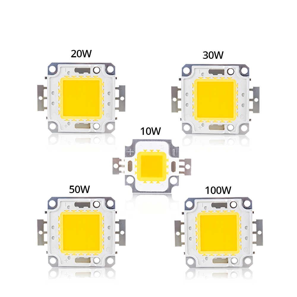 High Brightness LED COB Chip LED Bulb DC 12V 10W 36V 20W 30W 50W 100W DIY Spotlight Floodlight Chip Warm White Cold White