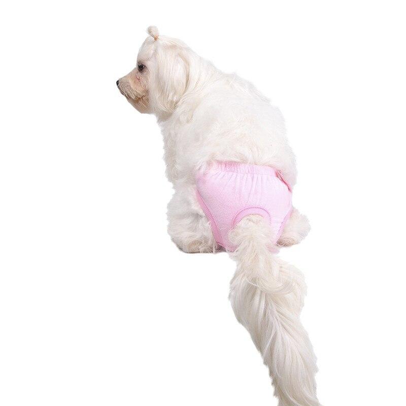 f3555887f841f8 Piękny Motyl Bielizna Śliczna Zwierzęta Psy Zwierzęta Pies Kot Spodnie  Fizjologiczne Majtki Pieluchy Sanitarnych w Piękny Motyl Bielizna Śliczna  Zwierzęta ...
