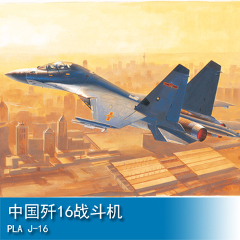 Assembly model    Trumpet player 1/48 China fighter 16   aircraft    Toys