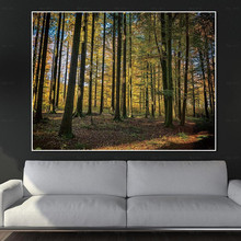 Wall Pictures for Living Room Sunrise Landscape Canvas Print Forest Painting Frameless Printing Modern Art Poster