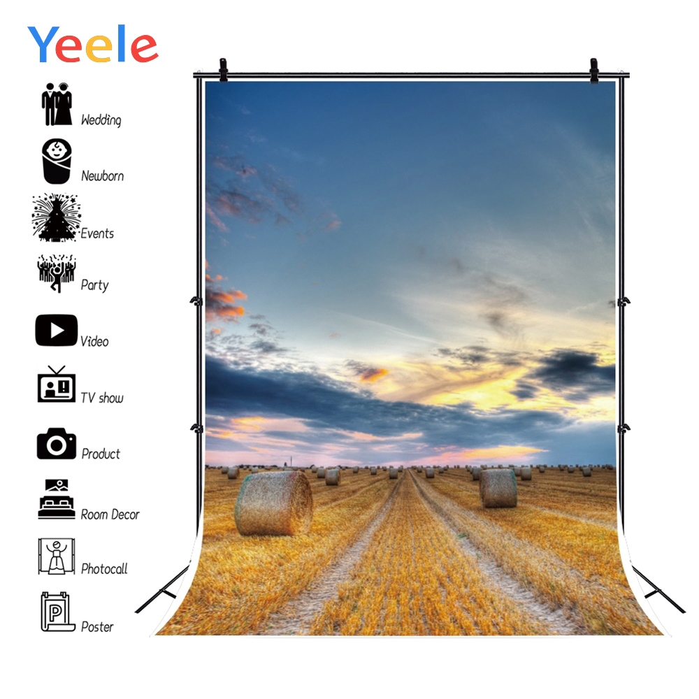 Yeele Hay Bale Rural Field Sunset Glow Canvas Vinyl Photography Backgrounds Personalized Photographic Backdrops For Photo Studio in Background from Consumer Electronics