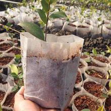 100 PCS  Nursery Pots Seedling-Raising Bags fabrics Garden Nursery bags Seed Germination Garden Plant Pouch