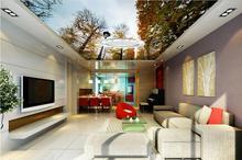 3d Decke Wandbilder Benutzerdefinierte Tapete Sky Wald Tapeten Wohnkultur Wohnzimmer Wand Papier