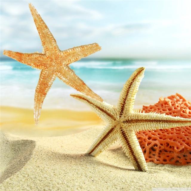 10pcs/Set 3 5 Inch DIY Sea Natural Star fish Tan Flat Yellow Star ...