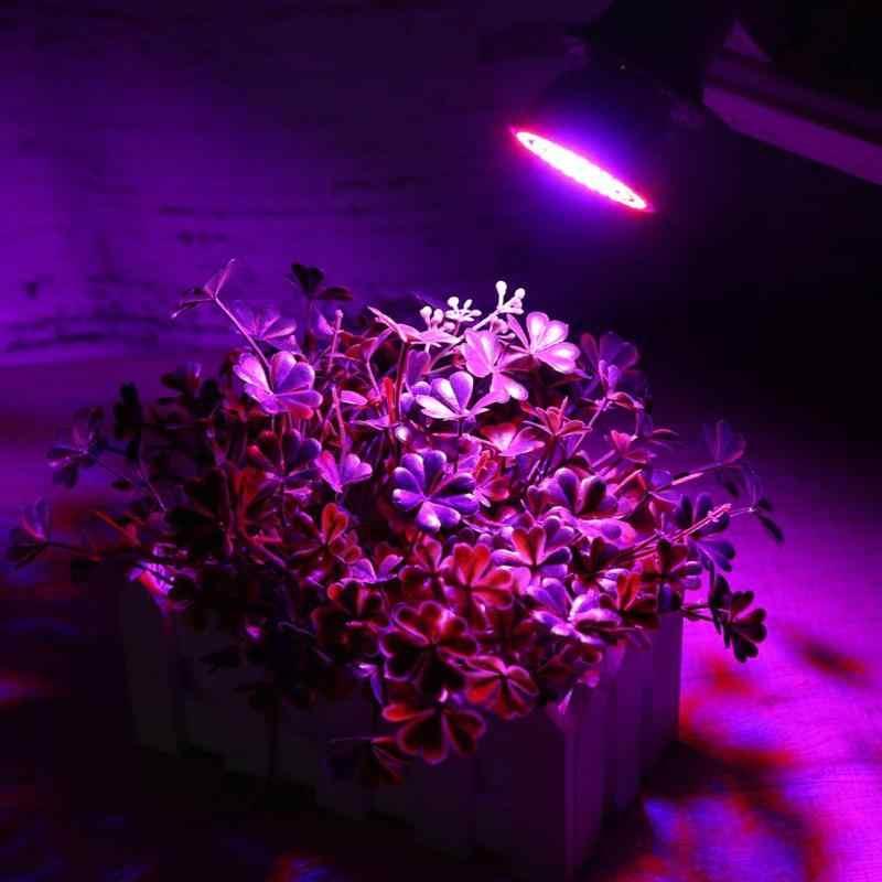 Spettro completo 3 w/4 w/5 w 220 V E27 2835SMD Rosso Blu UV IR LED Coltiva luce di Lampadina Lampada In Crescita Per la Coltura Idroponica di Piante Al Coperto Fiori