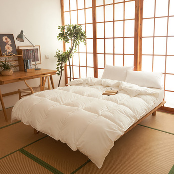 New Fashion Down Quilt Velvet Comforter For Autumn And Winter King/Full Size Duvet/Blanket/Quilt Down Filler The Quilt Core