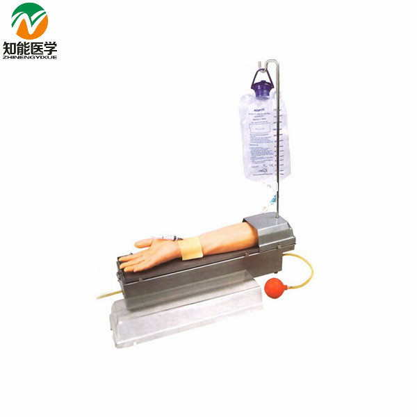 Rotatable Radial Artery Puncture Arm Model(Medical Model) BIX-HS8 WBW428 child bone marrow puncture and femoral venous puncture model