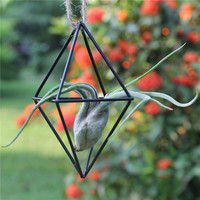 Creative Freestanding Hanging Metal Double Diamond Shaped Tillandsia Air Plant Rack