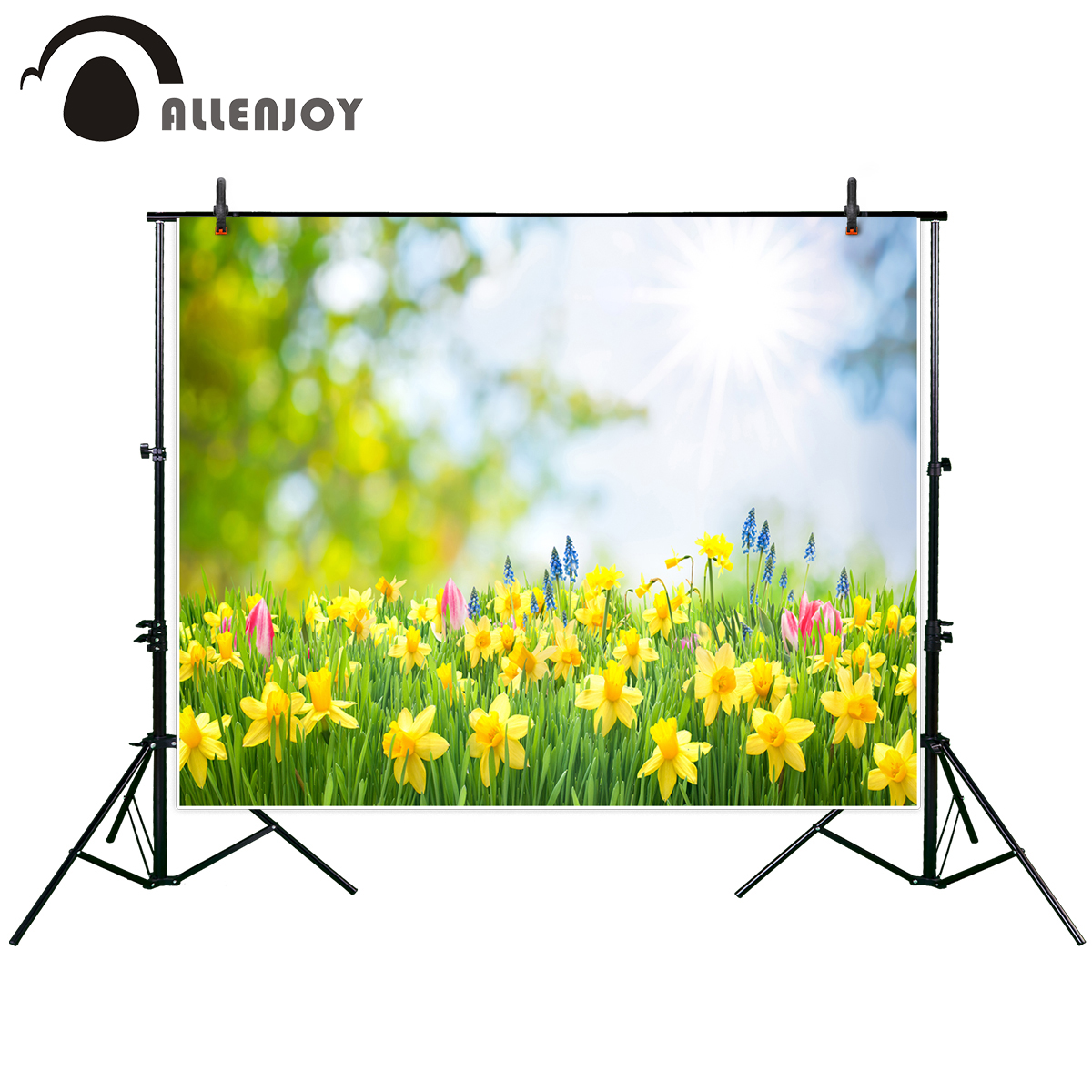 Allenjoy photography background Spring Easter background beautiful yellow daffodils professional festival backdrop photograph