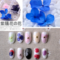 12colors/box 3D Real Dry Flower Rhinestone Storage Box Nail Art Decoration For UV Gel Polish Nail Stickers Manicure Tips Decals