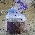 Breast Enhancement Cream CUIDADO de LA PIEL crema Puro extracto de papaya disponible Bestia S162
