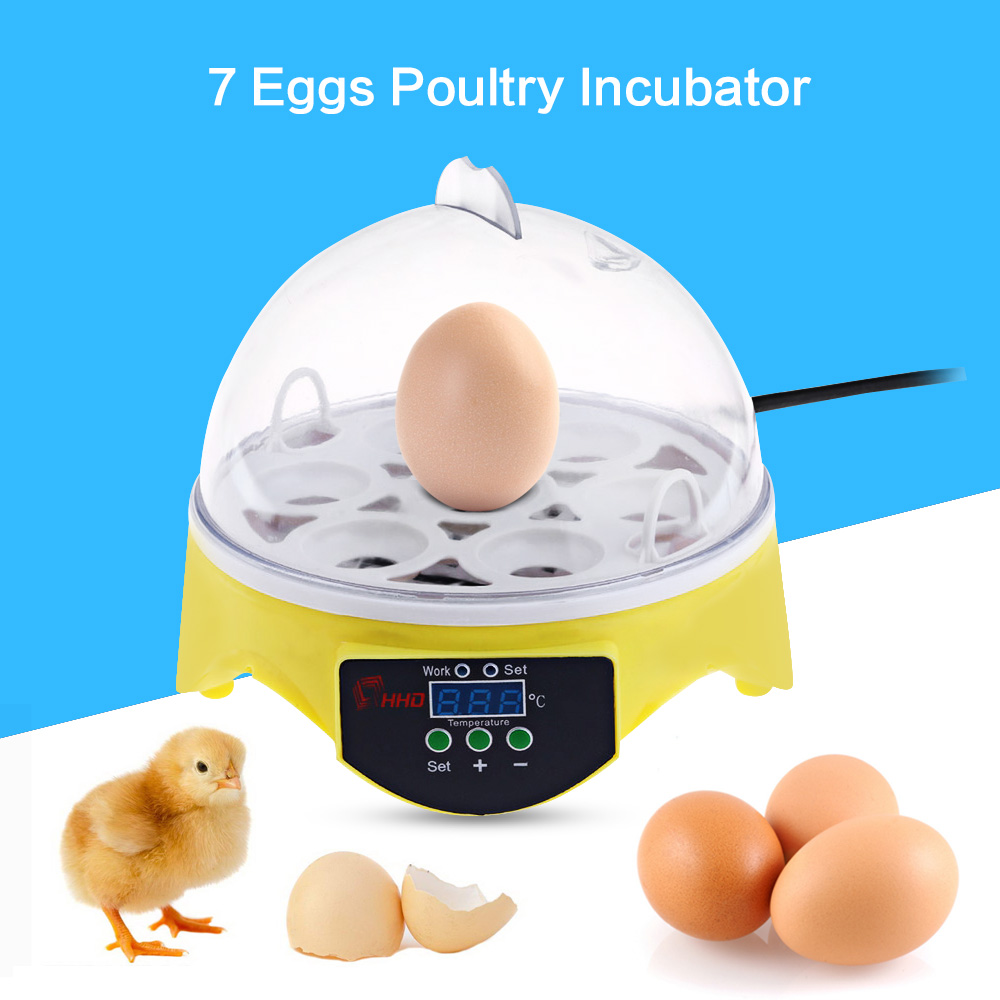 Portable Automatic Temperature Control Egg Tray Incubator Mini Egg Incubator 7PCS Eggs Automatic Poultry Chicken Hatcher Machine