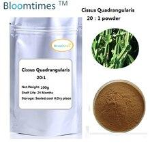 Natural Cissus Quadrangularis Extract 20:1 bulk powder 200g/bag