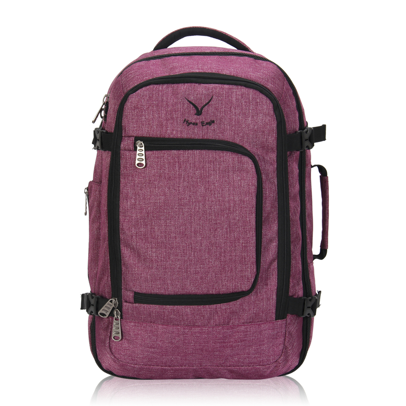 8ac6eebfa425 Hynes Eagle Brand Designer Travel Backpack 40L Flight Approved Carry On  Backpack For Men Women Large Luggage Travel Bags 2018