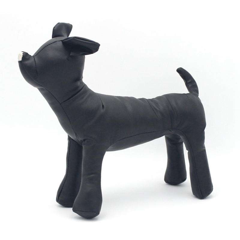 Conj. p cães