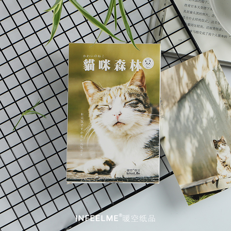 30 Sheets/Set Cute Cat and Forest Postcard Greeting Card Birthday Gift Card Message Card30 Sheets/Set Cute Cat and Forest Postcard Greeting Card Birthday Gift Card Message Card