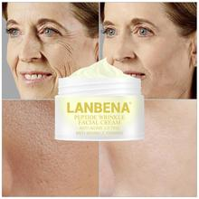 LANBENA Six Peptide Face Cream Anti Wrinkle Lifting Facial Anti- Aging Skin Care Compacting Gel