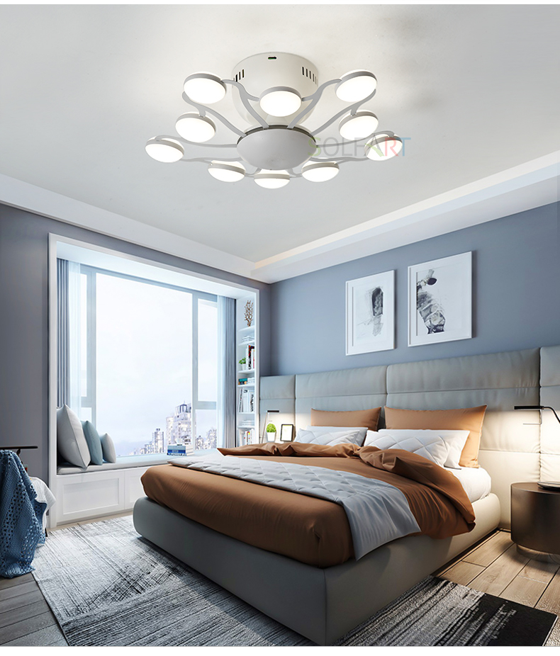 8047-LED Ceiling Light Sconce Luminaria Chandelier Ceiling Avize Light Fixtures Ceiling Lamp_06