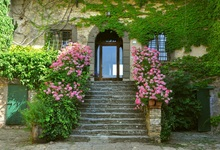 Laeacco House Arch Door Flowers Ladders Photography Backgrounds Vinyl Digital Customized Photographic Backdrops For Photo Studio