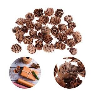 Image 2 - 120pcs Mini Decorative Pinecone Pine Cones Vase Bowl Filler Displays Decor