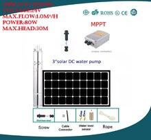 Freies Verschiffen DC 24 v brushless solarpumpe max. flow rate 1.0m3/h landwirtschaft bewässerung 3 jahre garantie 3SPS1. 0/30-D24/80