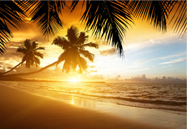Custom 3d Photo Wallpaper Sunset Beach Coconut Trees Scenery Living