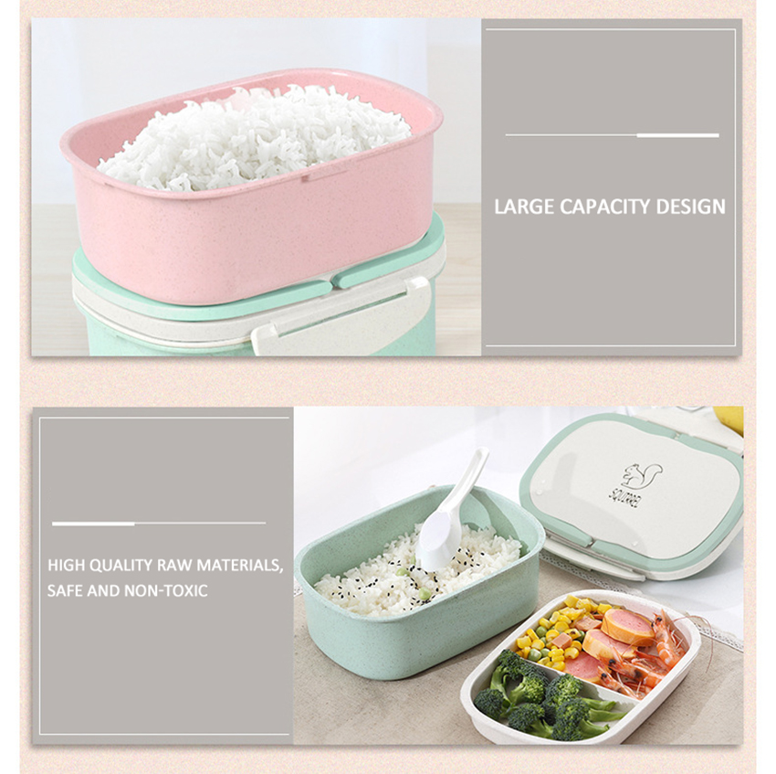 Microwave Lunch Box 2 Layer Portable
