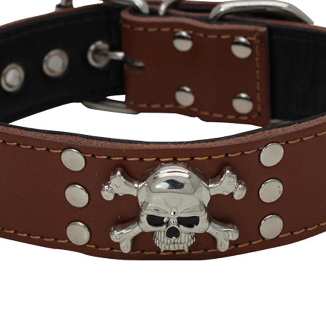 Collier pour chien Skull