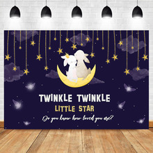 NeoBack Gender Reveal Backdrop Twinkle Little Star Baby Shower Photo Background Cute Bunny Surprise Backgdrops